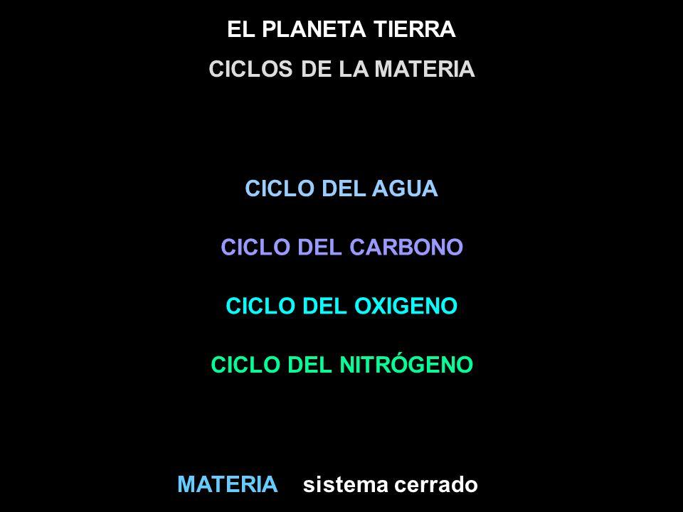 CICLOS DE LA MATERIA CICLO DEL AGUA. CICLO DEL CARBONO. CICLO DEL OXIGENO. CICLO DEL NITRÓGENO. MATERIA.