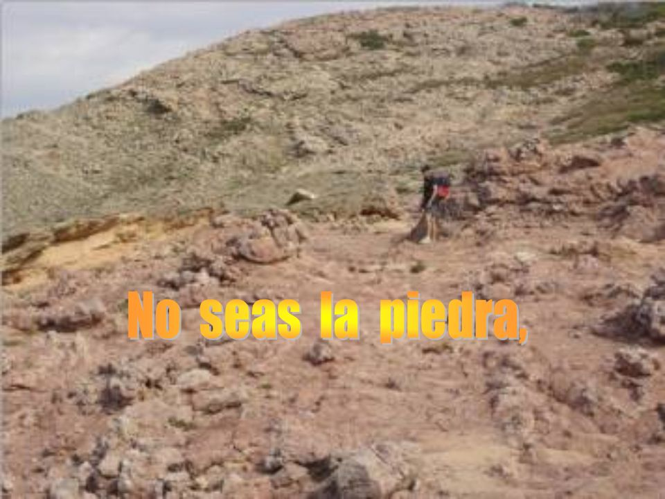 No seas la piedra,