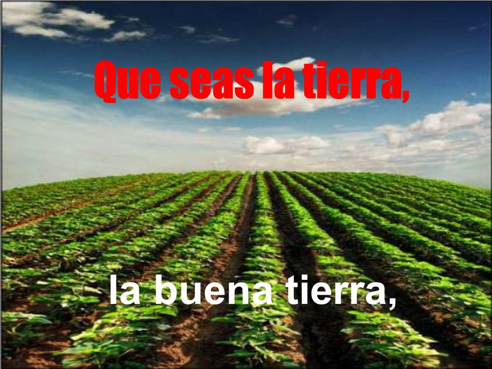 Que seas la tierra, la buena tierra,
