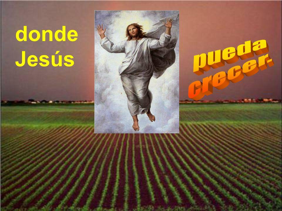 donde Jesús pueda crecer.