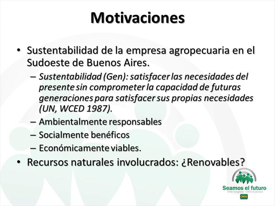 Motivaciones Sustentabilidad de la empresa agropecuaria en el Sudoeste de Buenos Aires.