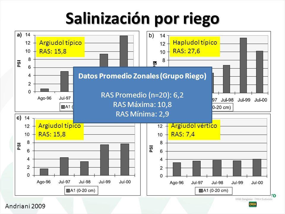 Salinización por riego