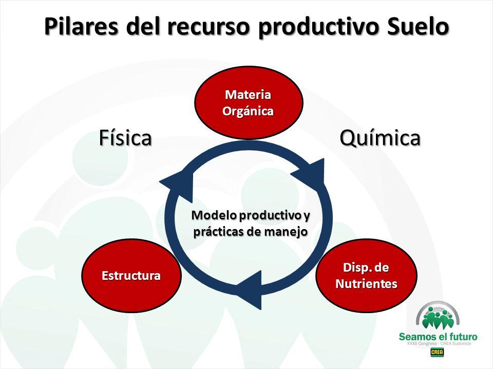 Pilares del recurso productivo Suelo
