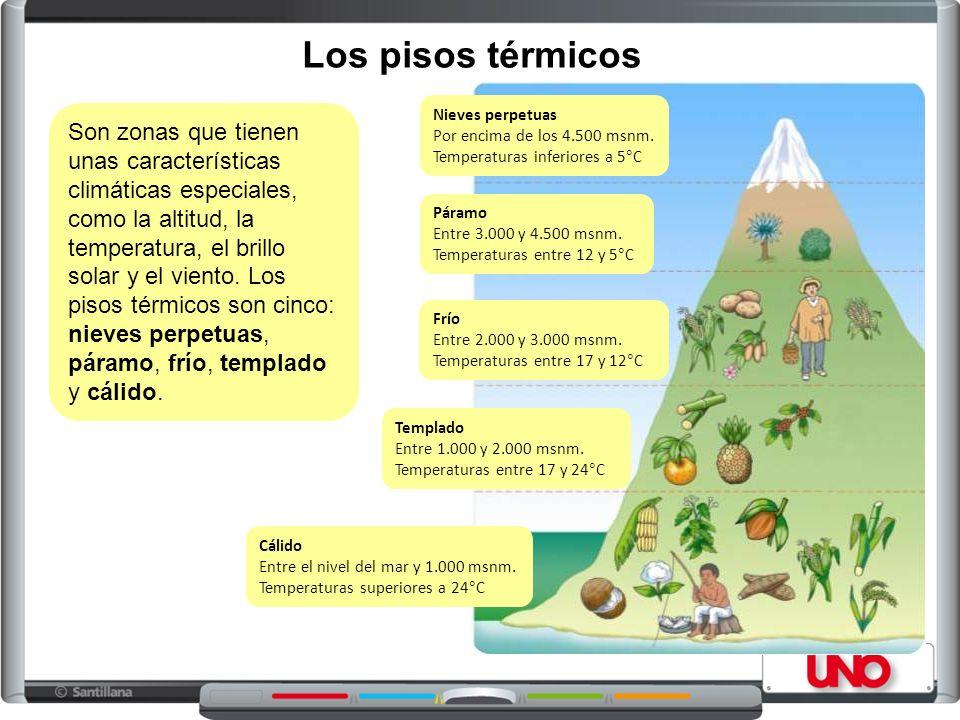 Los pisos térmicos Nieves perpetuas. Por encima de los 4.500 msnm. Temperaturas inferiores a 5°C.
