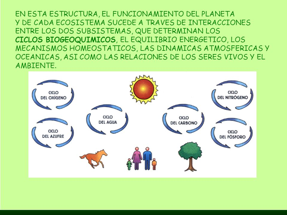 EN ESTA ESTRUCTURA, EL FUNCIONAMIENTO DEL PLANETA