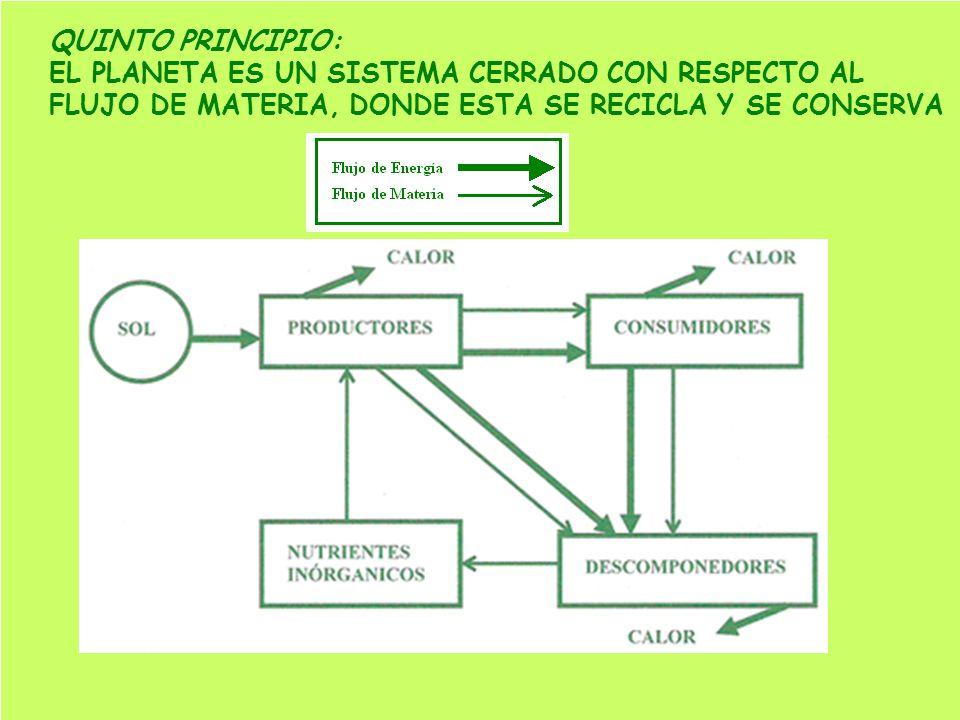 QUINTO PRINCIPIO: EL PLANETA ES UN SISTEMA CERRADO CON RESPECTO AL.