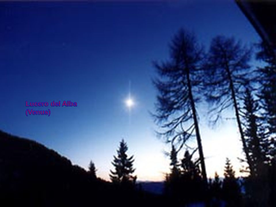 Lucero del Alba (Venus)