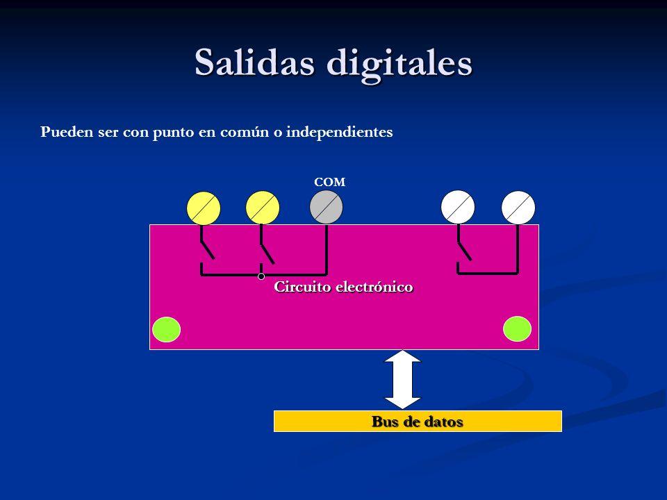 Salidas digitales Pueden ser con punto en común o independientes