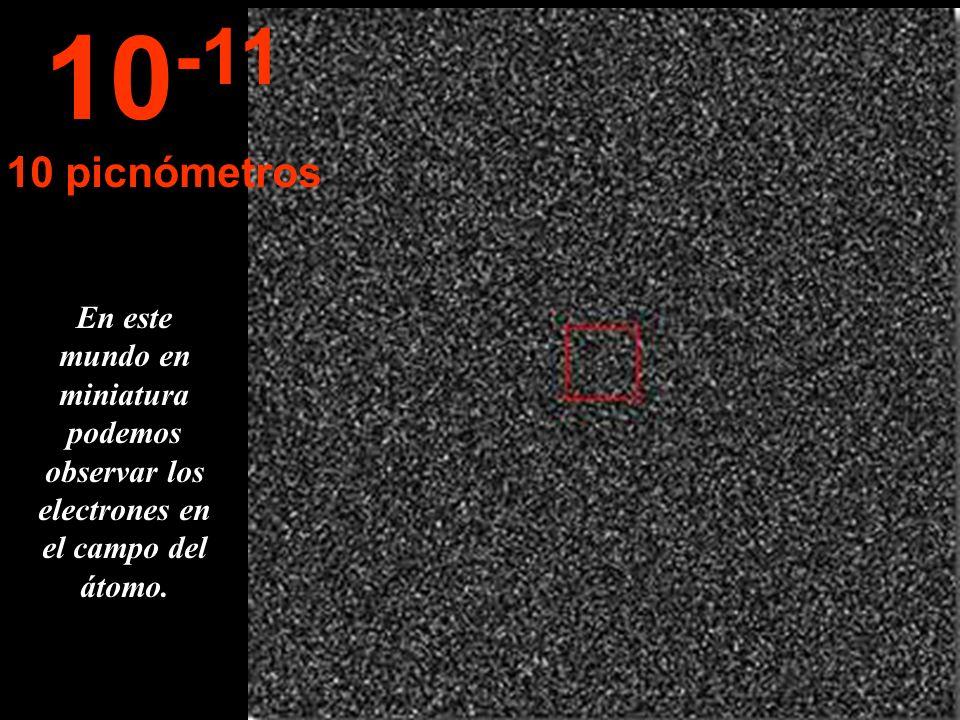 10-11 10 picnómetros.