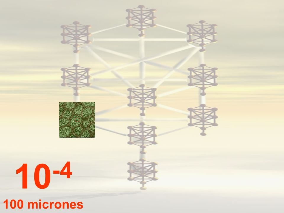 10-4 100 micrones