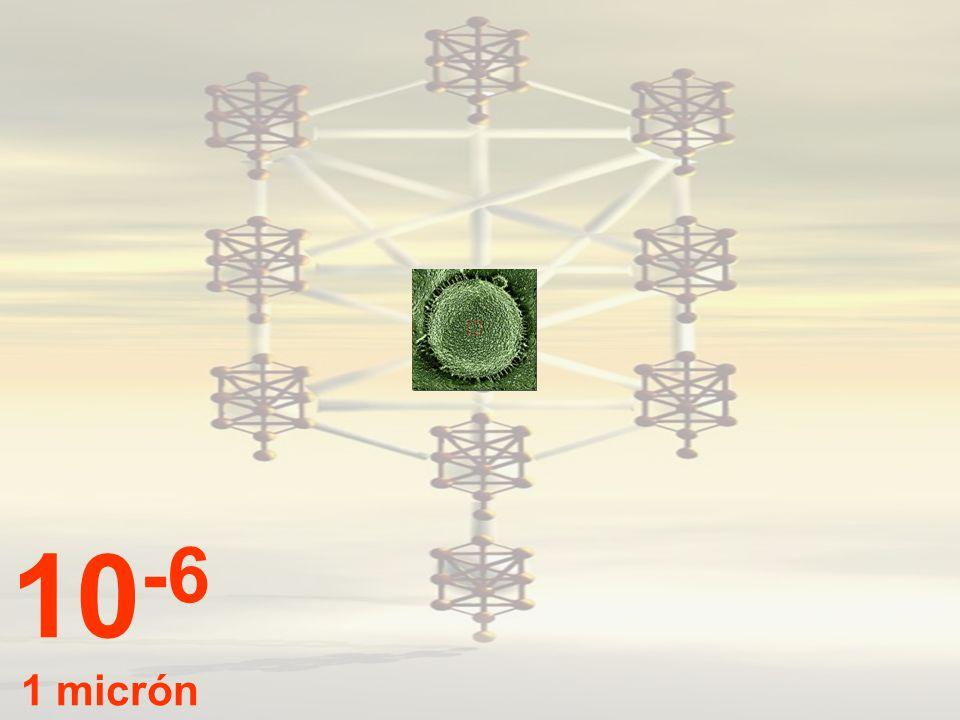 10-6 1 micrón