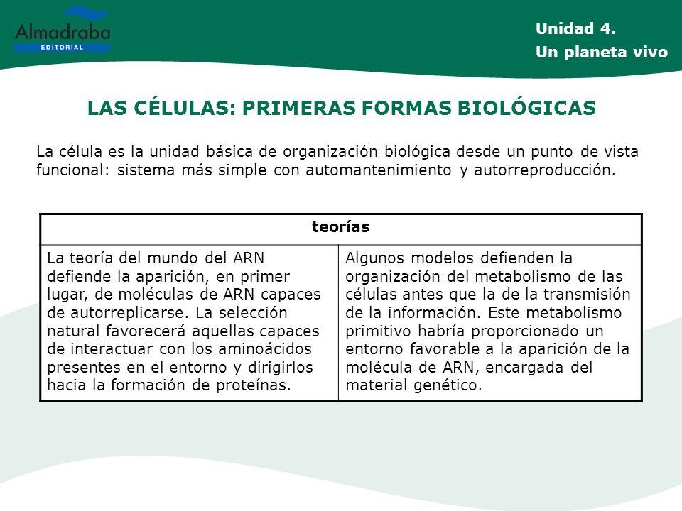 LAS CÉLULAS: PRIMERAS FORMAS BIOLÓGICAS