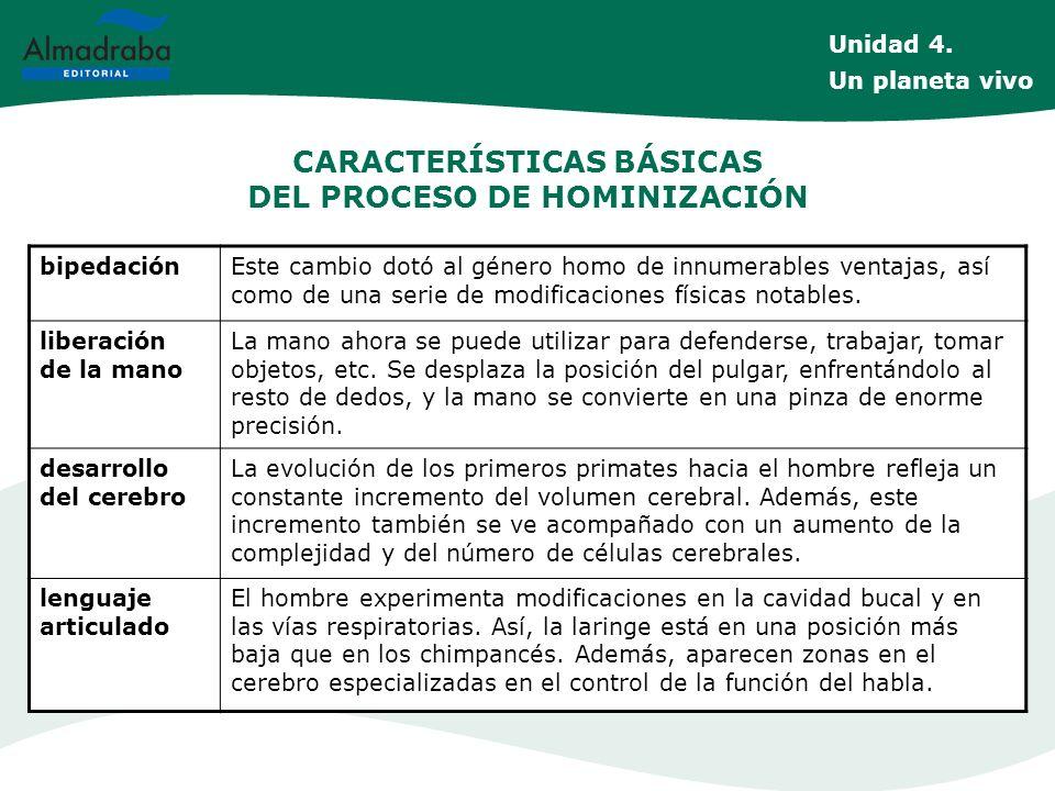 CARACTERÍSTICAS BÁSICAS DEL PROCESO DE HOMINIZACIÓN