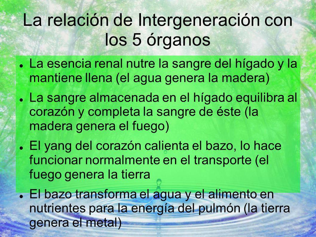 La relación de Intergeneración con los 5 órganos