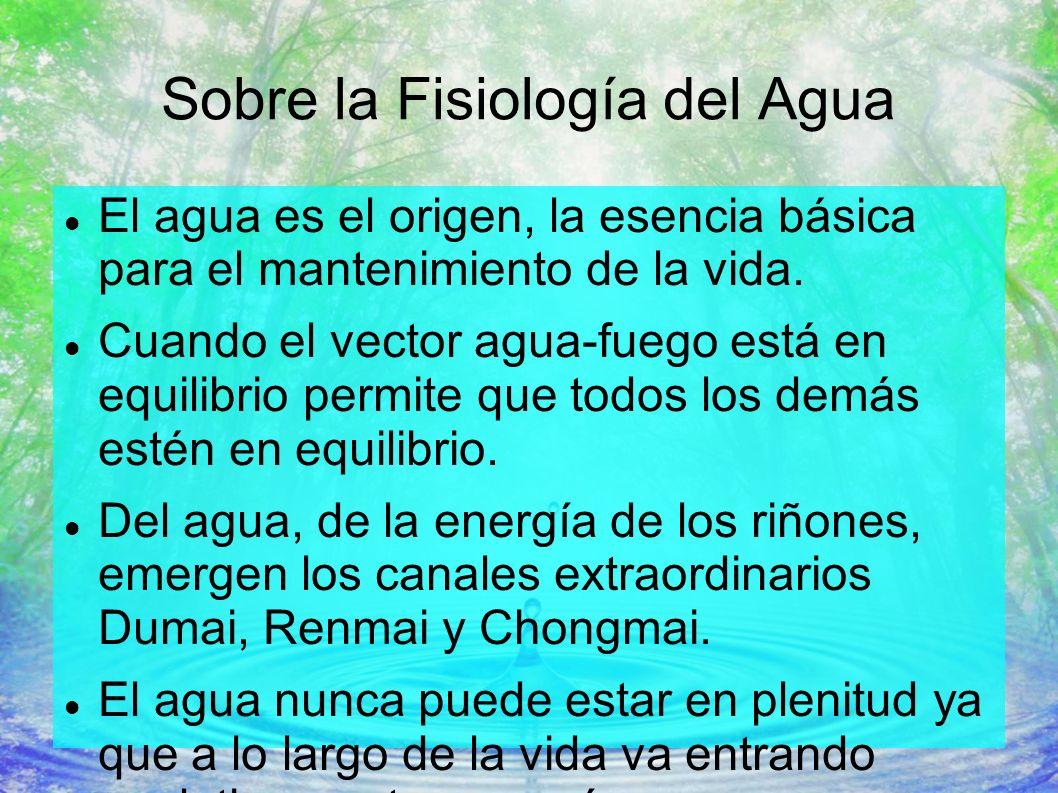 Sobre la Fisiología del Agua