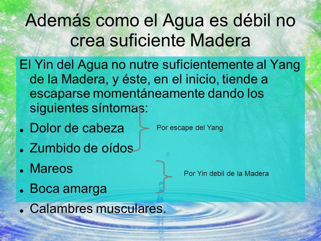 Además como el Agua es débil no crea suficiente Madera
