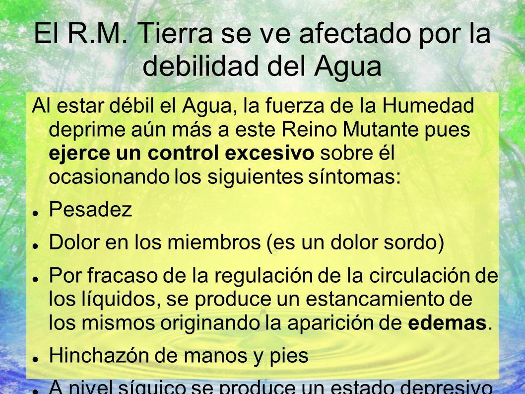 El R.M. Tierra se ve afectado por la debilidad del Agua