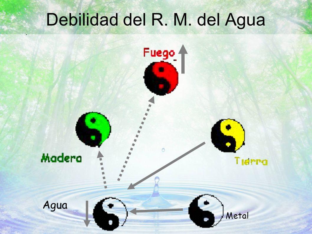Debilidad del R. M. del Agua