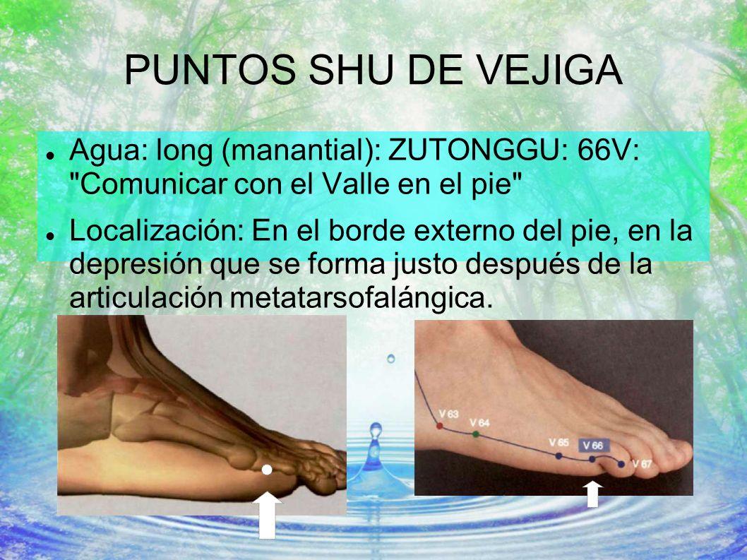 PUNTOS SHU DE VEJIGA Agua: long (manantial): ZUTONGGU: 66V: Comunicar con el Valle en el pie