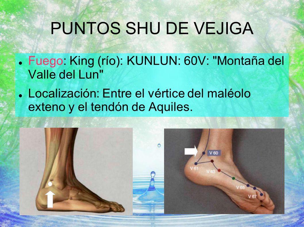 PUNTOS SHU DE VEJIGA Fuego: King (río): KUNLUN: 60V: Montaña del Valle del Lun