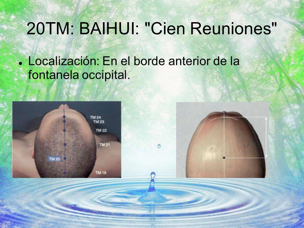 20TM: BAIHUI: Cien Reuniones