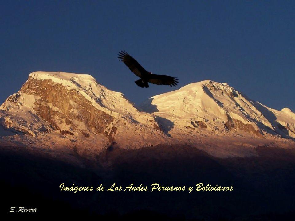 Imágenes de Los Andes Peruanos y Bolivianos