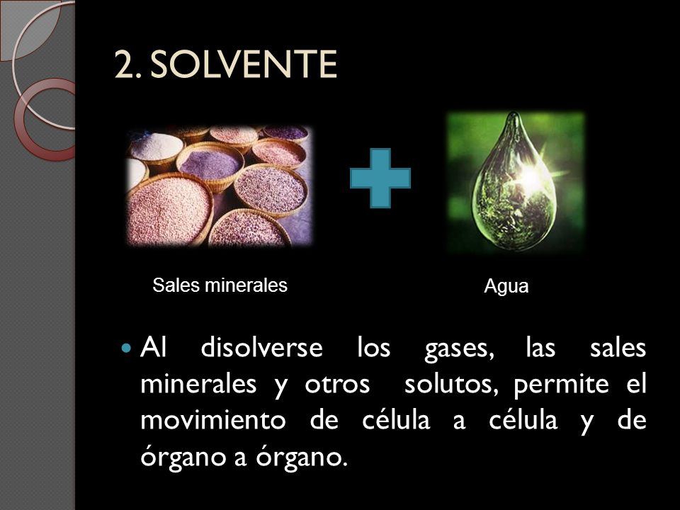 2. SOLVENTE Sales minerales. Agua.