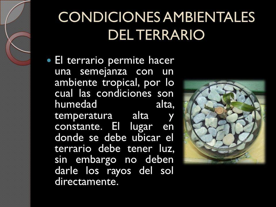 CONDICIONES AMBIENTALES DEL TERRARIO
