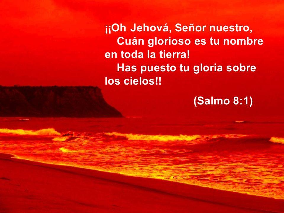 ¡¡Oh Jehová, Señor nuestro, Cuán glorioso es tu nombre en toda la tierra! Has puesto tu gloria sobre los cielos!!