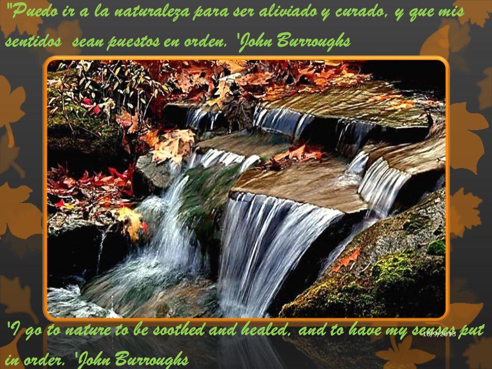 Puedo ir a la naturaleza para ser aliviado y curado, y que mis sentidos sean puestos en orden. John Burroughs