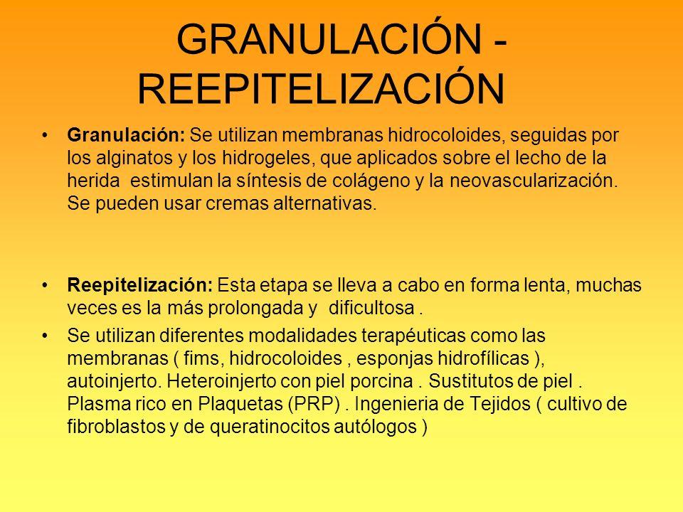 GRANULACIÓN - REEPITELIZACIÓN