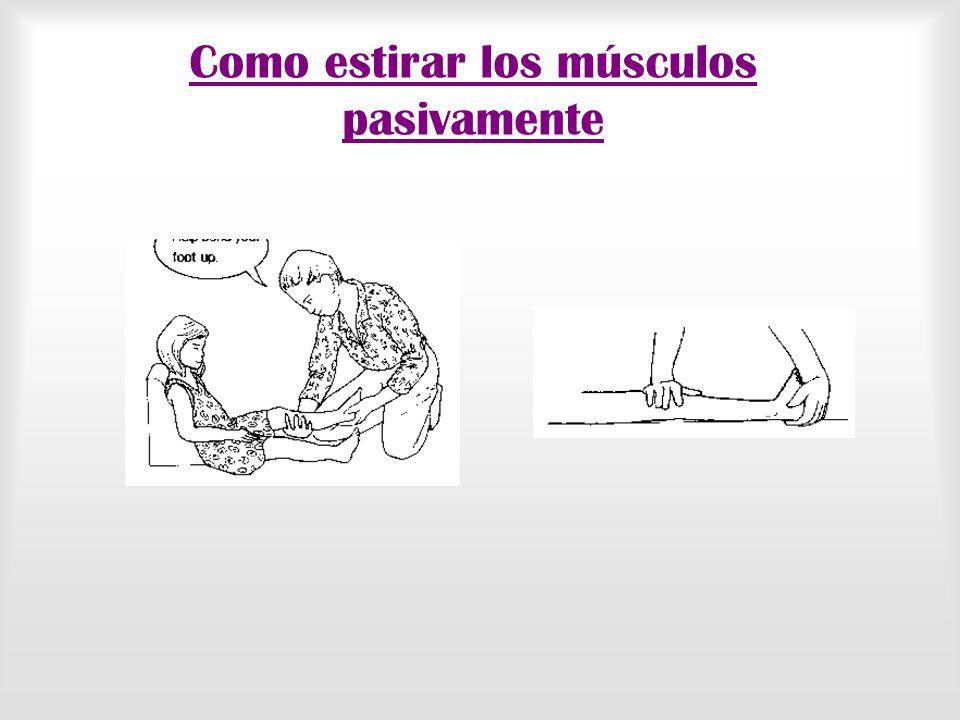 Como estirar los músculos pasivamente
