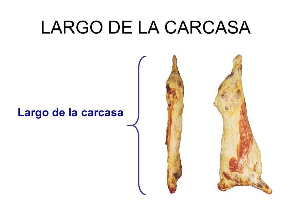 LARGO DE LA CARCASA Largo de la carcasa