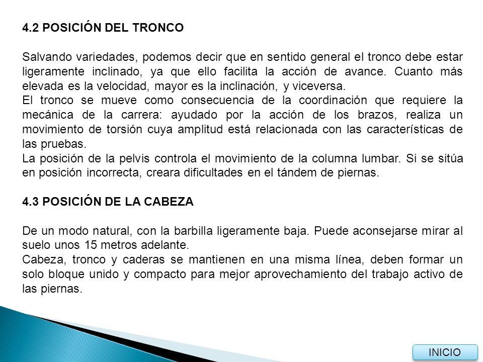 4.2 POSICIÓN DEL TRONCO