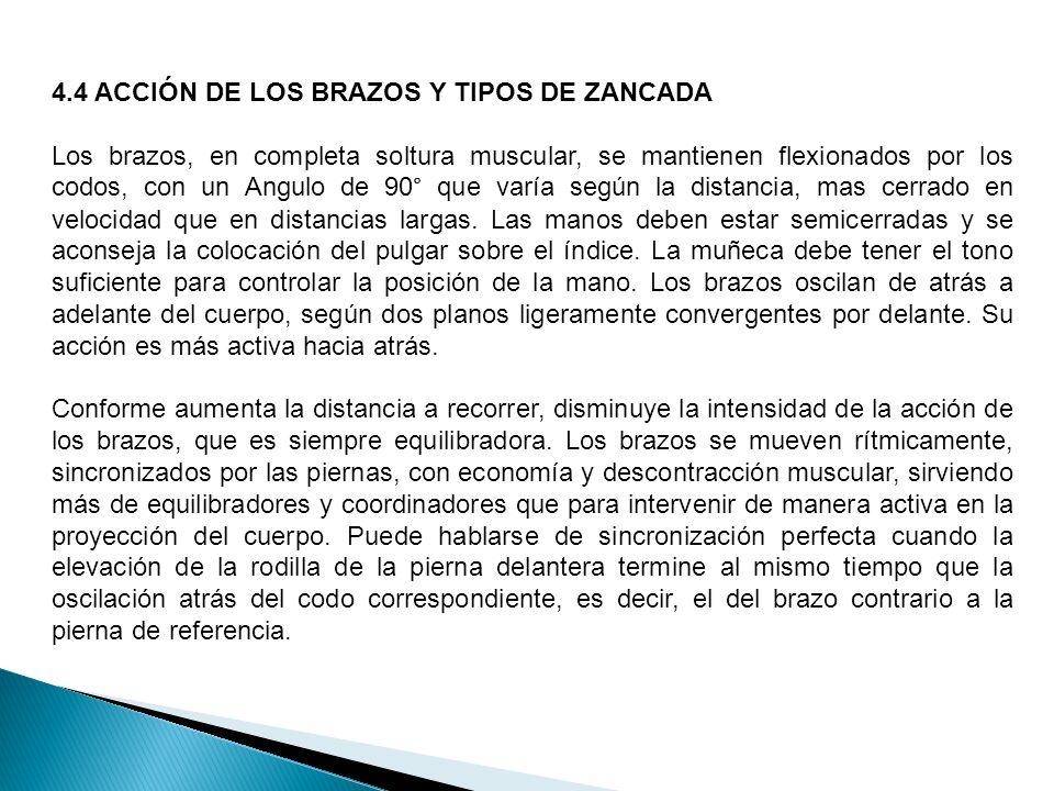 4.4 ACCIÓN DE LOS BRAZOS Y TIPOS DE ZANCADA