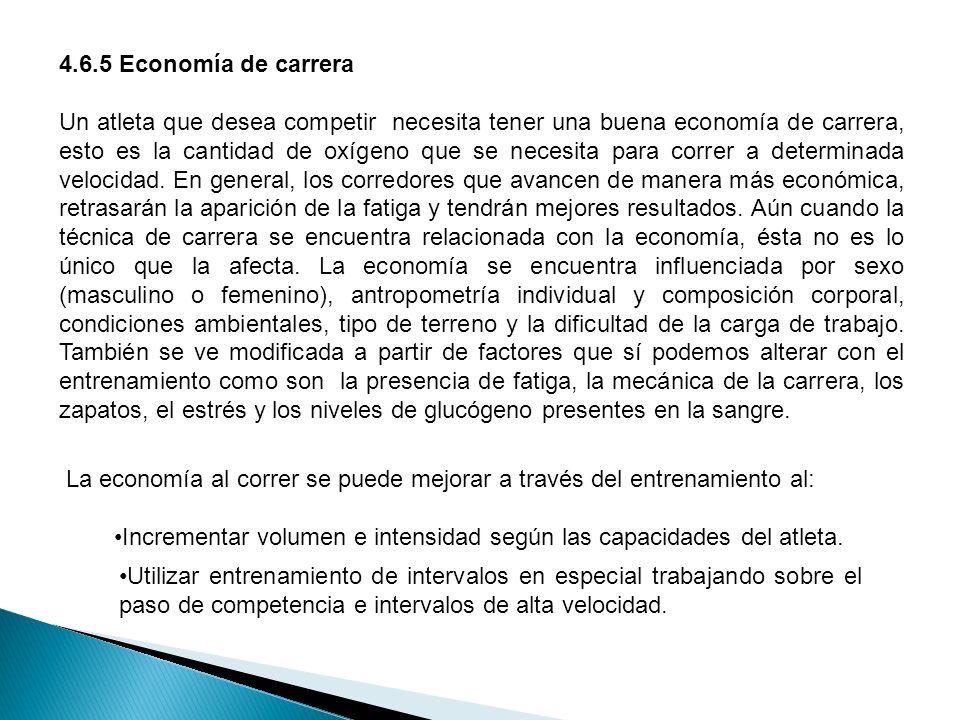 4.6.5 Economía de carrera