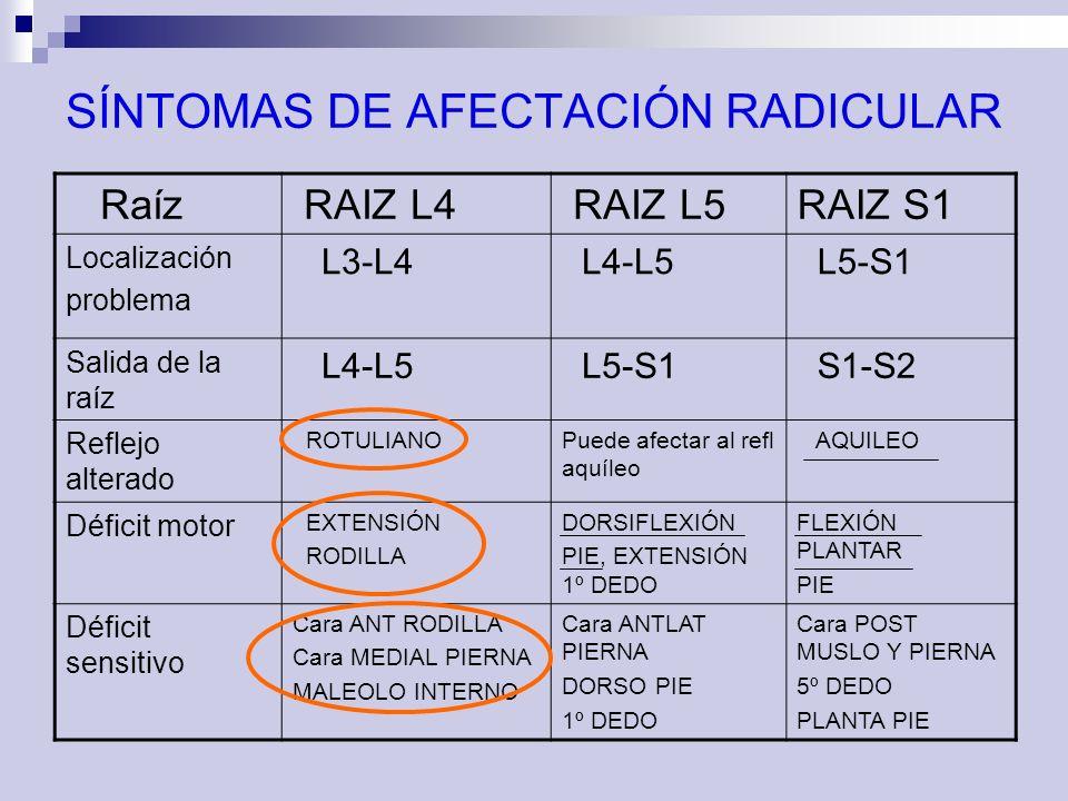 SÍNTOMAS DE AFECTACIÓN RADICULAR