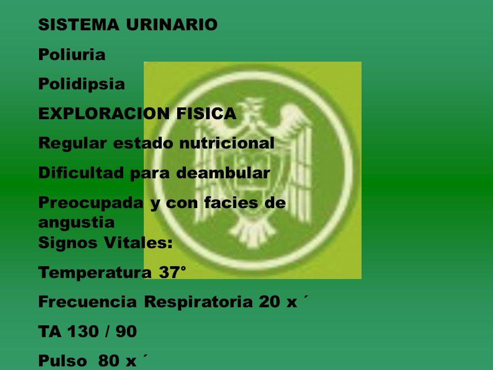 SISTEMA URINARIO Poliuria. Polidipsia. EXPLORACION FISICA. Regular estado nutricional. Dificultad para deambular.