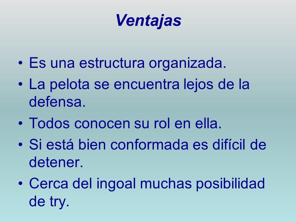 Ventajas Es una estructura organizada.