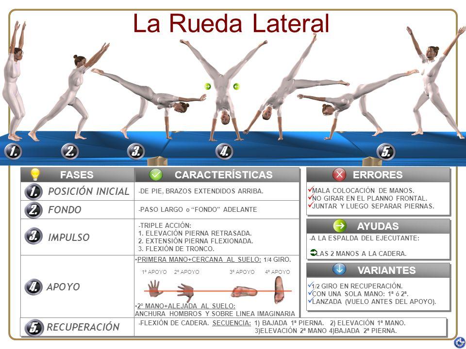La Rueda Lateral FASES CARACTERÍSTICAS ERRORES POSICIÓN INICIAL FONDO
