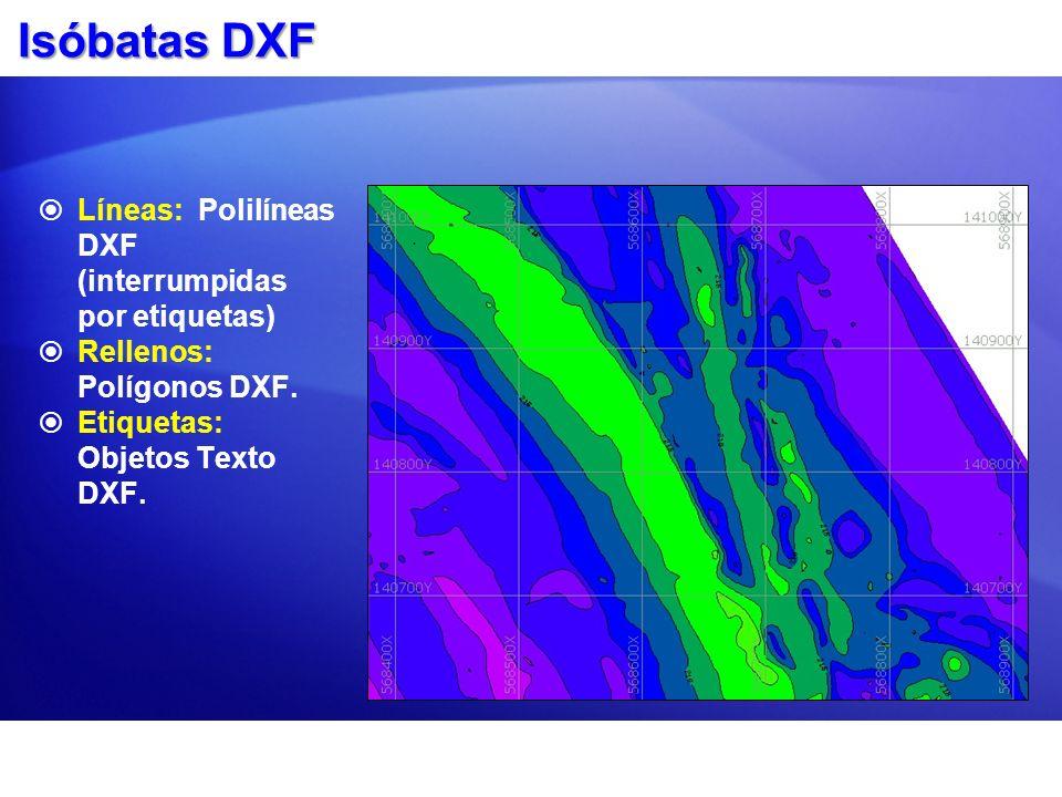 Isóbatas DXF Líneas: Polilíneas DXF (interrumpidas por etiquetas)