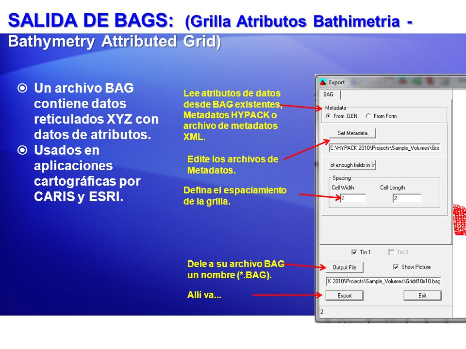 SALIDA DE BAGS: (Grilla Atributos Bathimetria - Bathymetry Attributed Grid)