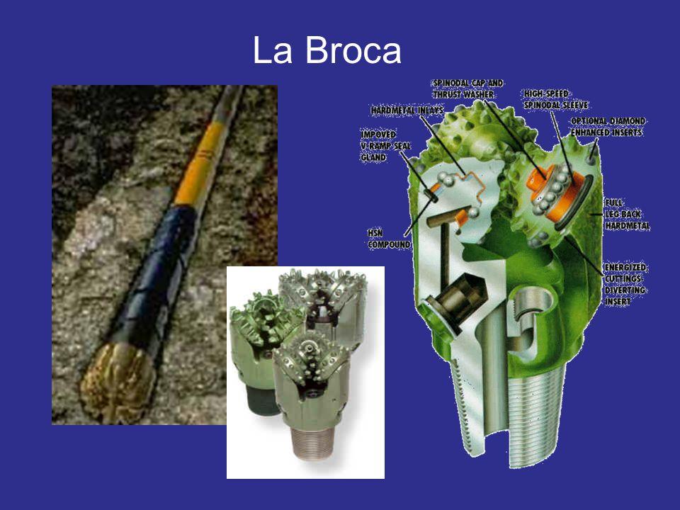 La Broca