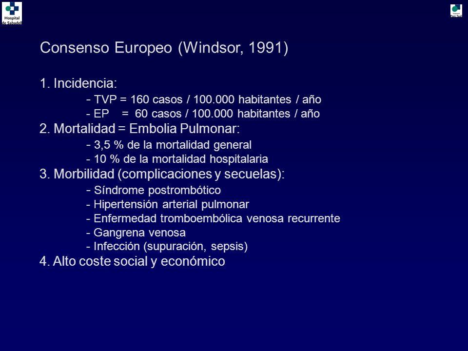 Consenso Europeo (Windsor, 1991)