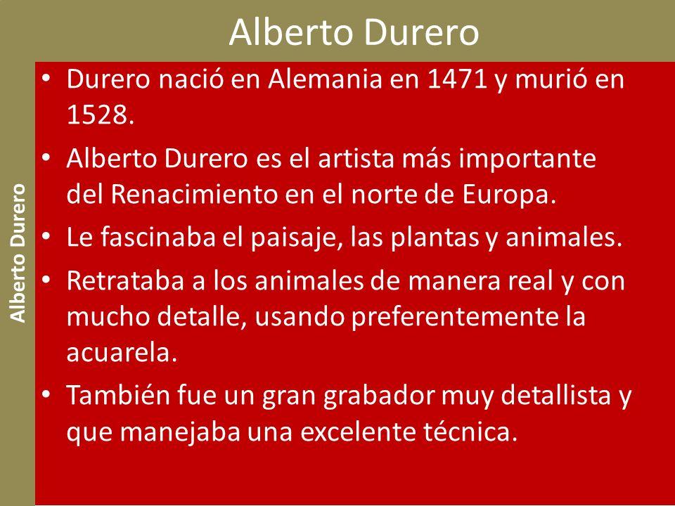 Alberto Durero Durero nació en Alemania en 1471 y murió en 1528.
