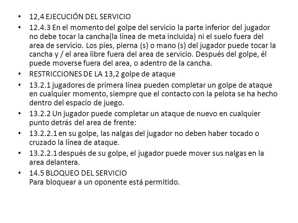 12,4 EJECUCIÓN DEL SERVICIO