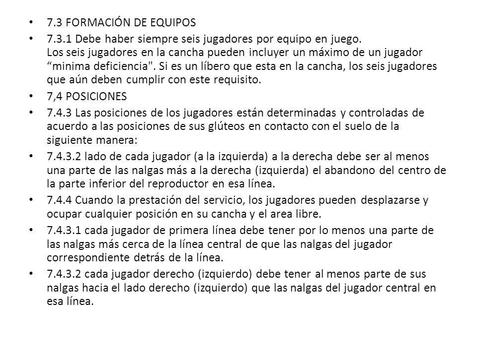 7.3 FORMACIÓN DE EQUIPOS