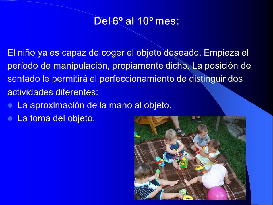 Del 6º al 10º mes: El niño ya es capaz de coger el objeto deseado. Empieza el. período de manipulación, propiamente dicho. La posición de.