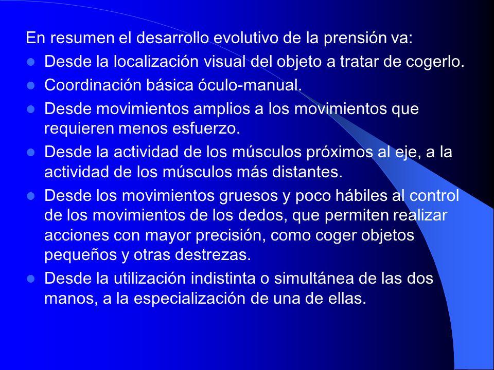 En resumen el desarrollo evolutivo de la prensión va: