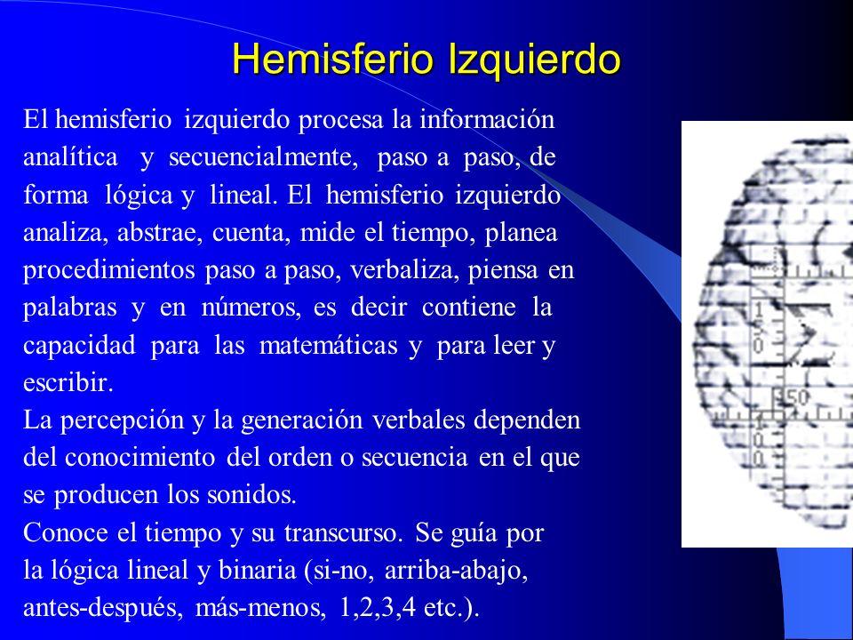 Hemisferio Izquierdo El hemisferio izquierdo procesa la información